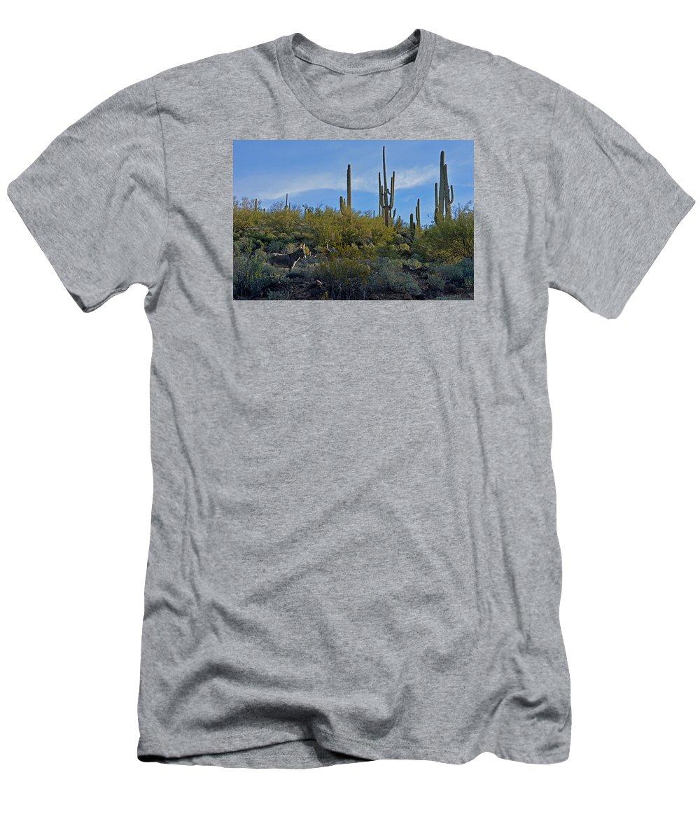 Mule Men's T-Shirt (Athletic Fit) featuring the photograph Desert Mule by Martin Massari