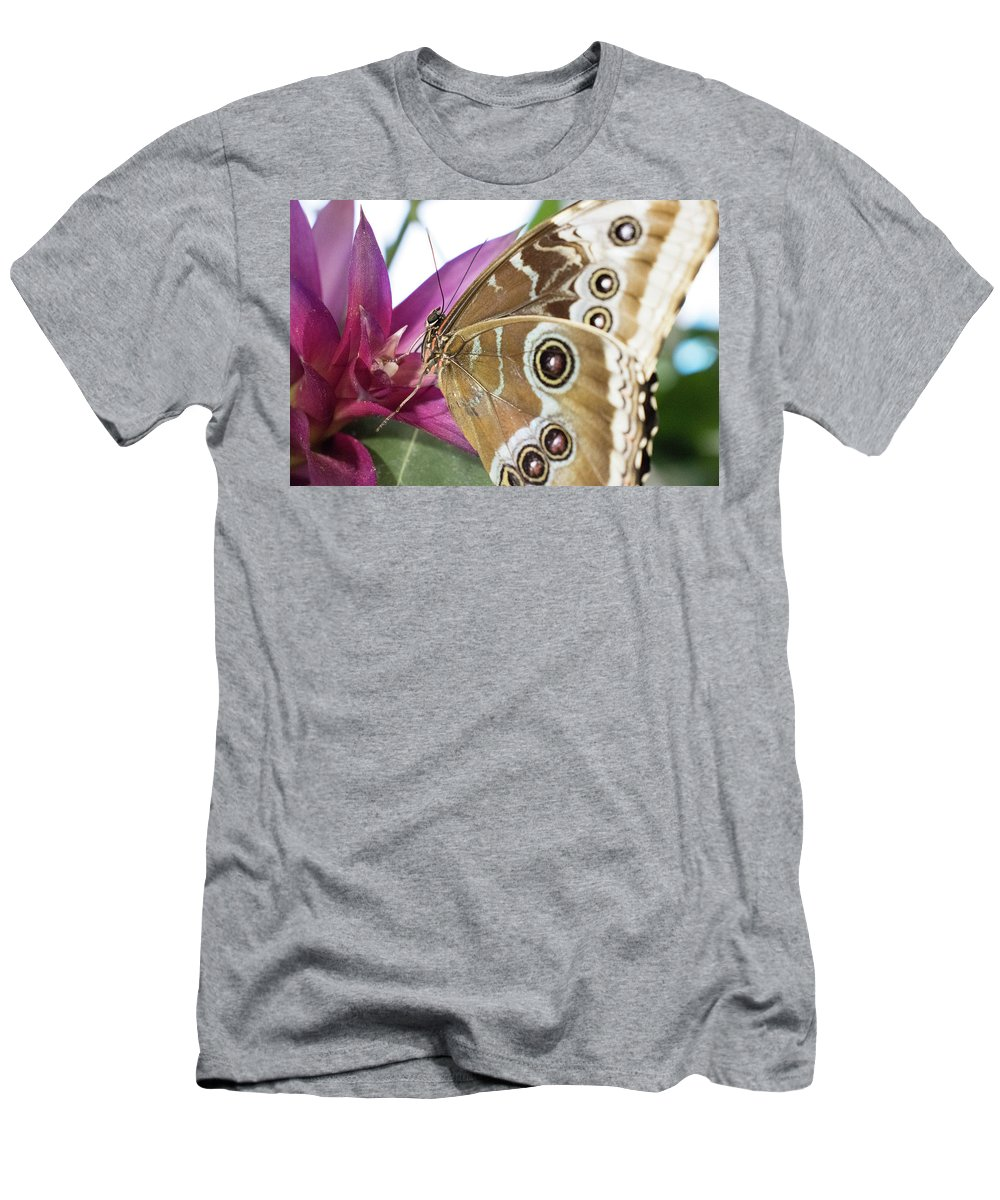 Butterfly Men's T-Shirt (Athletic Fit) featuring the photograph Detailed Wings by Megan Greenfeld