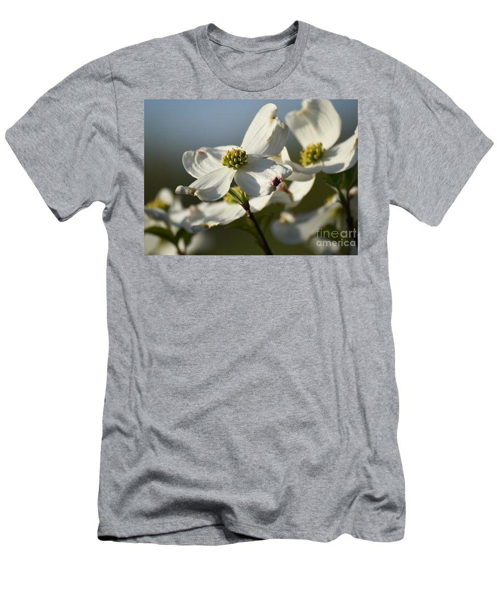Dogwood Chorus Men's T-Shirt (Athletic Fit) featuring the photograph Dogwood Chorus by Rowena Throckmorton
