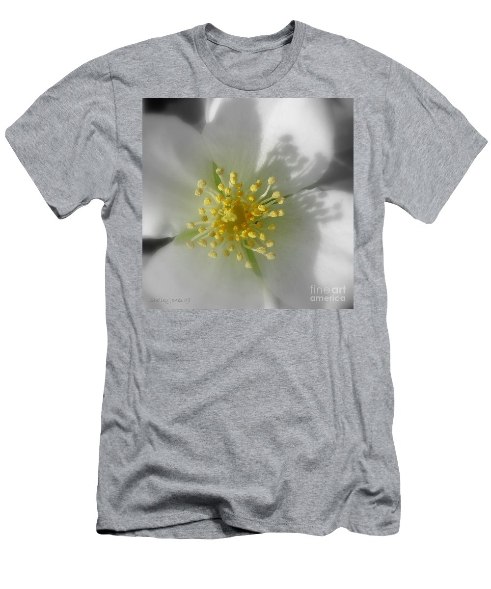 Photography Men's T-Shirt (Athletic Fit) featuring the photograph Dogwood by Shelley Jones