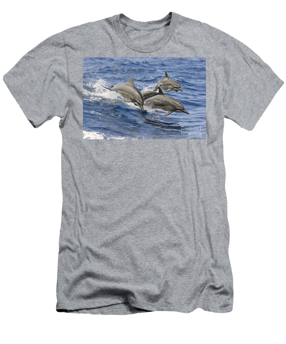 Animal Art Men's T-Shirt (Athletic Fit) featuring the photograph Dolphins Leaping by Dave Fleetham - Printscapes