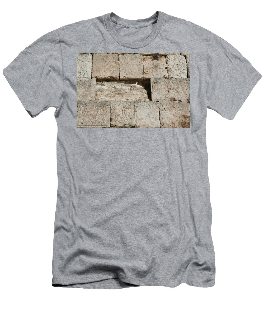 Kotel Men's T-Shirt (Athletic Fit) featuring the photograph Dove On The Kotel by Eliyahu Shear