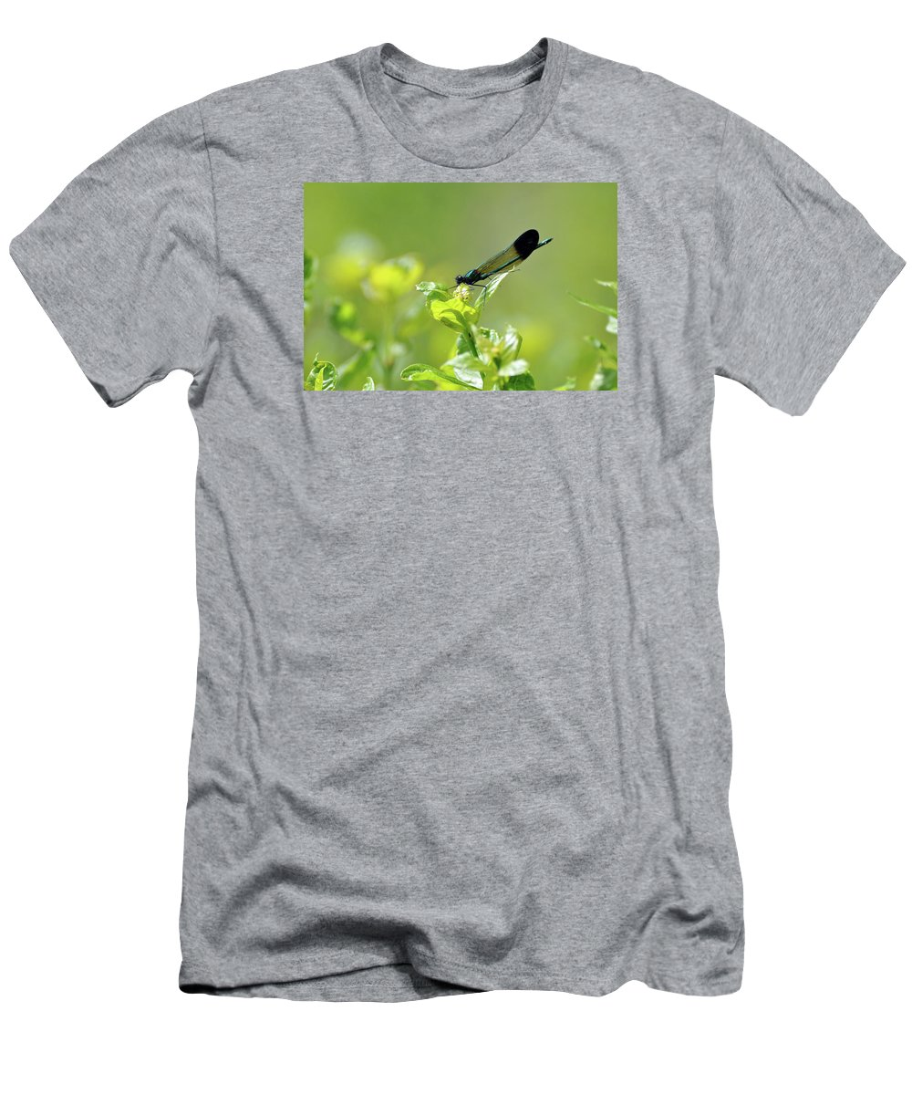Dragonfly Men's T-Shirt (Athletic Fit) featuring the photograph Dragonfly by Glenn Gordon