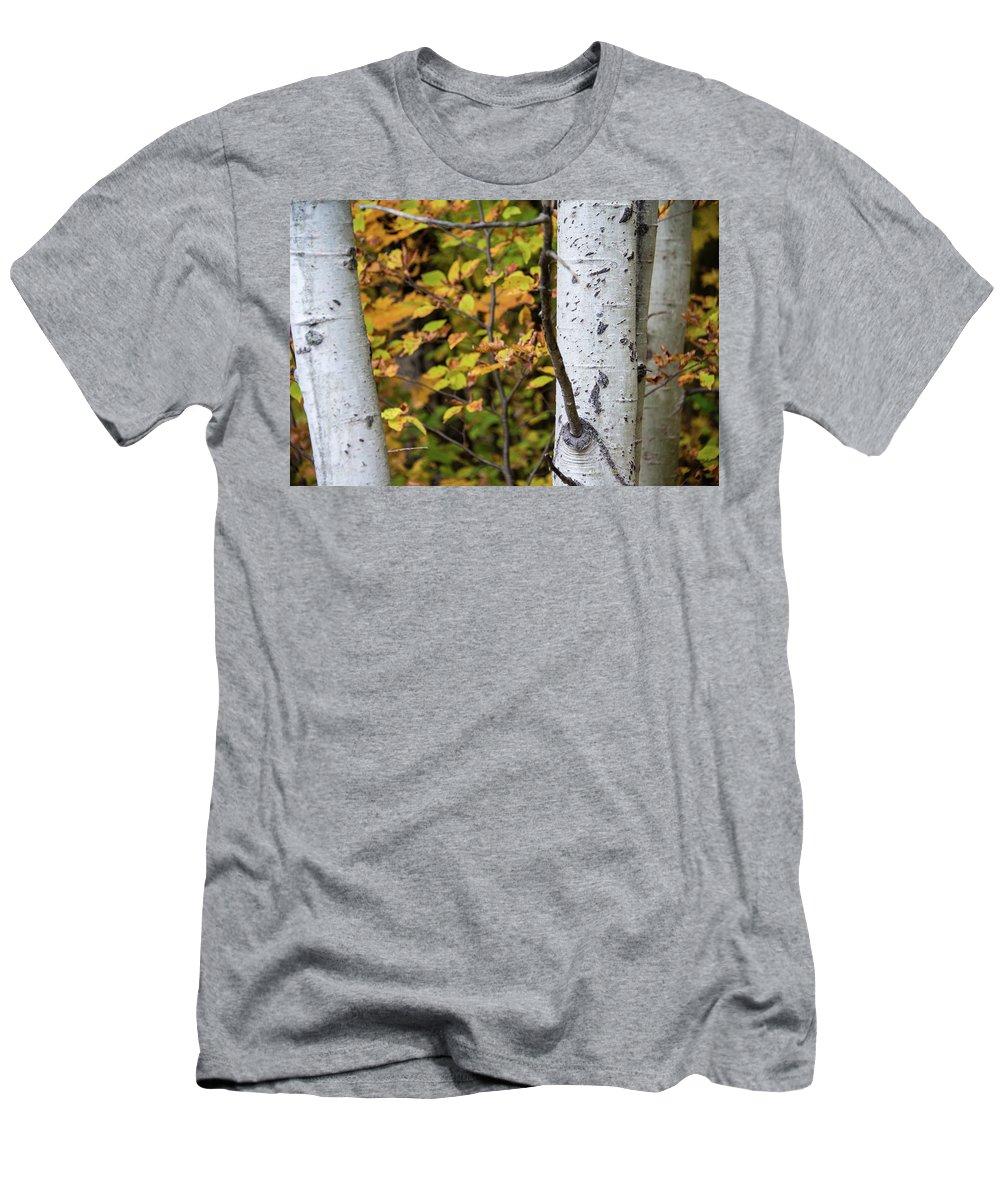 Nature Men's T-Shirt (Athletic Fit) featuring the photograph Dsc_3674 by Daniel Sanchez