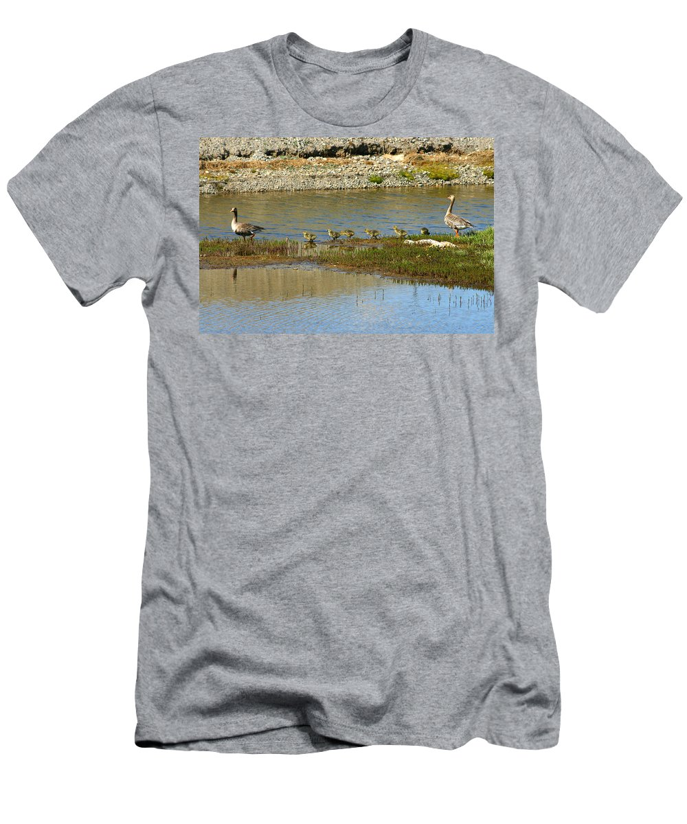 Ducks Men's T-Shirt (Athletic Fit) featuring the photograph Ducks In A Row by Anthony Jones