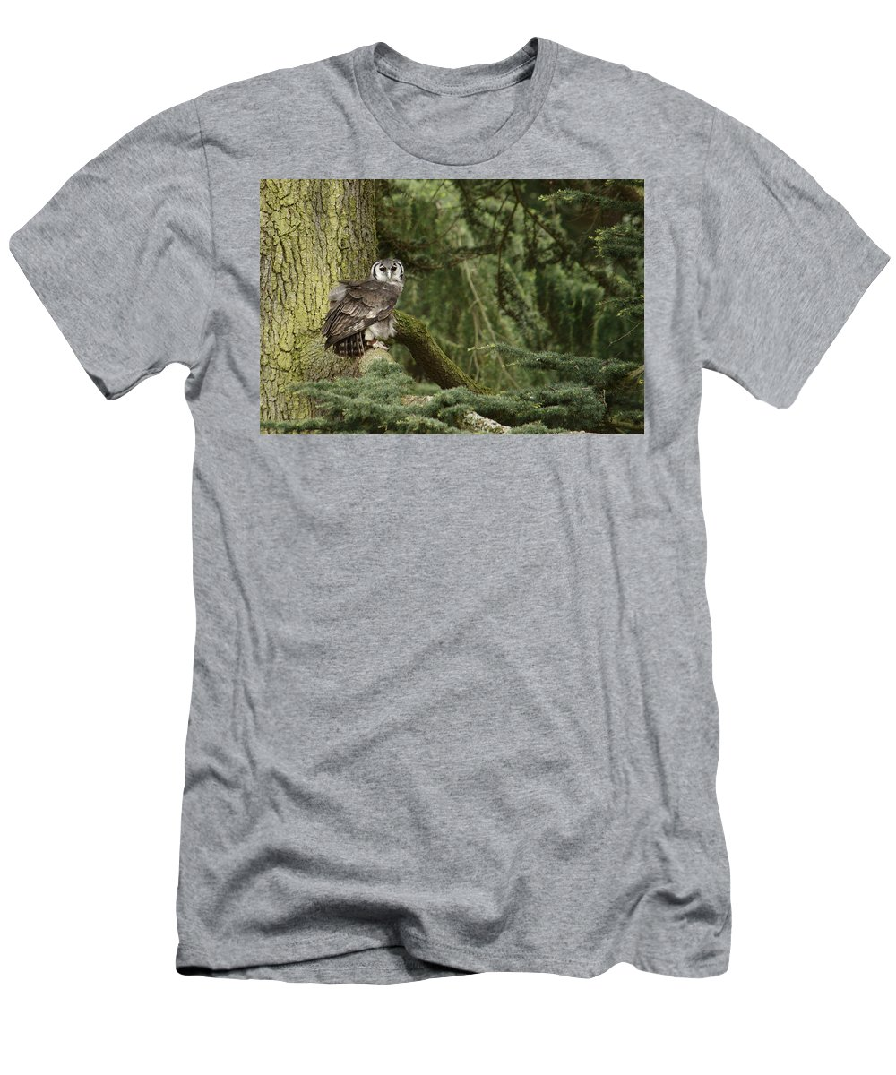 Owl Men's T-Shirt (Athletic Fit) featuring the photograph Eagle Owl In Forest by Adrian Wale