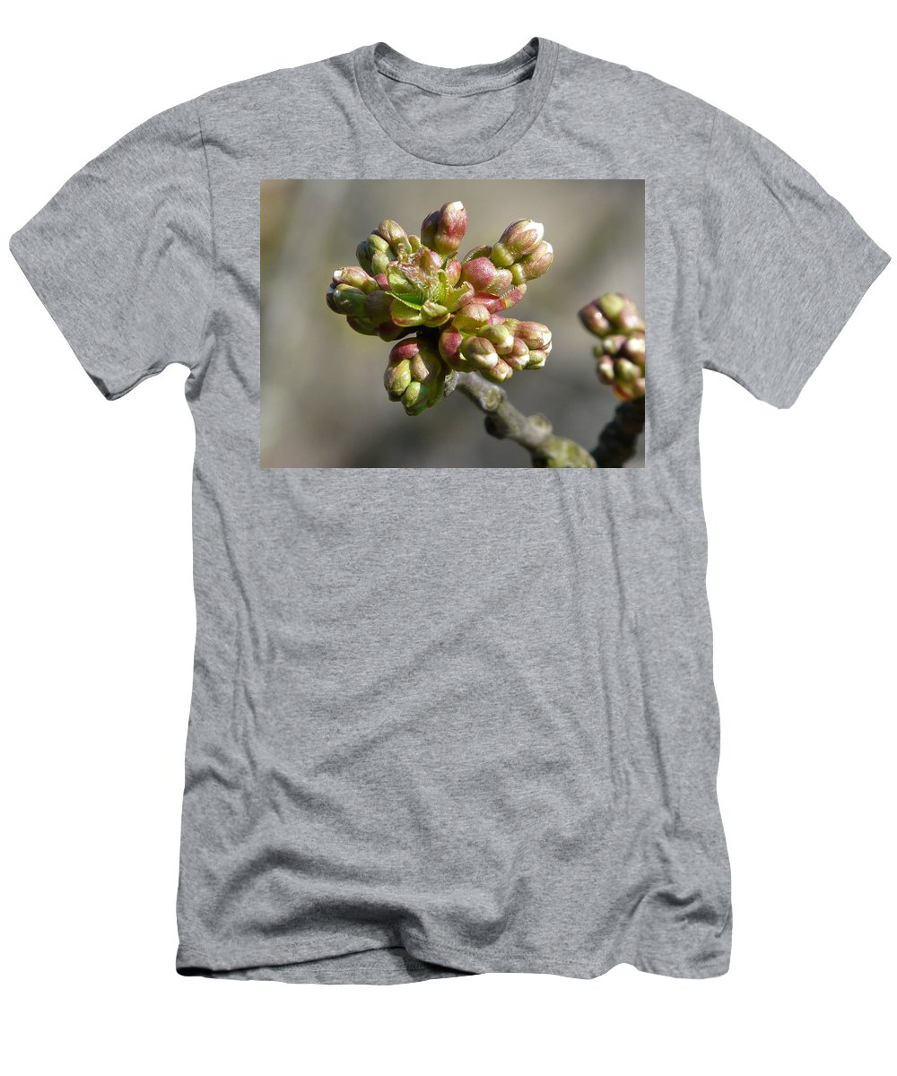 Cherry Men's T-Shirt (Athletic Fit) featuring the photograph Early Cherry Blossom by Valerie Ornstein