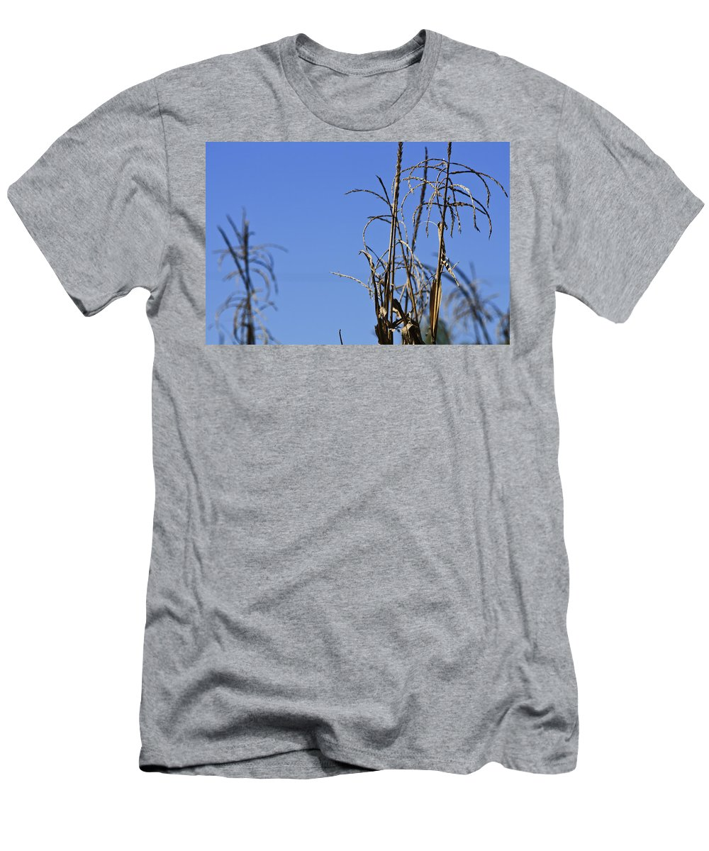 Corn Men's T-Shirt (Athletic Fit) featuring the photograph End Of Season by Teresa Mucha