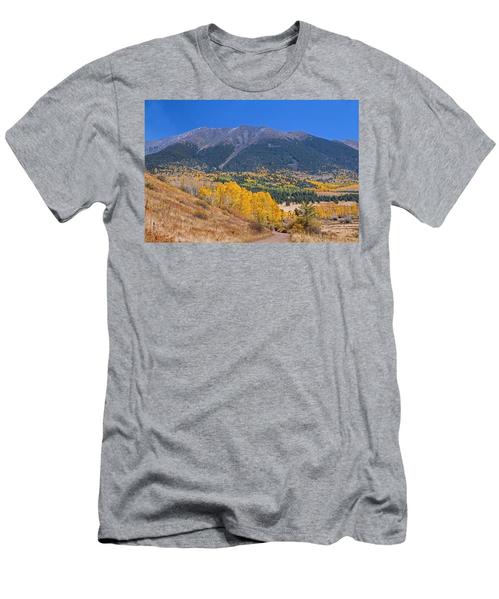 Fall Men's T-Shirt (Athletic Fit) featuring the photograph Entering Hart Prairie by Susan Westervelt
