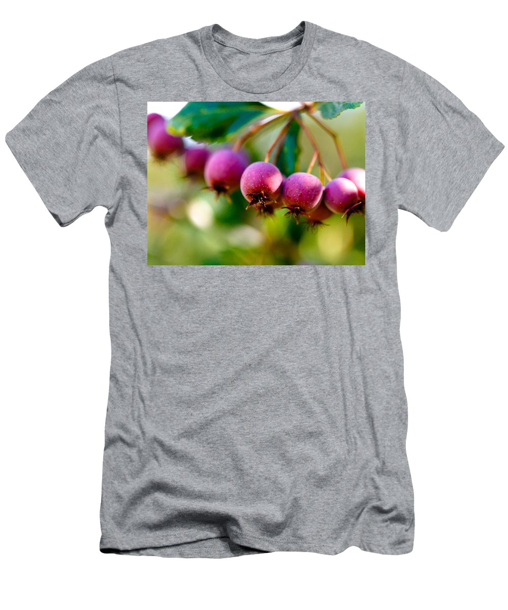 Berry Men's T-Shirt (Athletic Fit) featuring the photograph Fall Berries by Marilyn Hunt