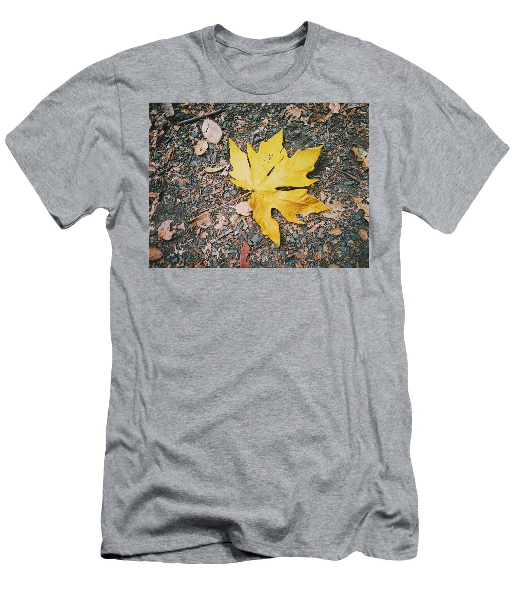 Fall Men's T-Shirt (Athletic Fit) featuring the photograph Fallen Leaf by Eden Feil