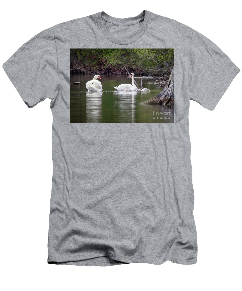 Mute Swans Men's T-Shirt (Athletic Fit) featuring the photograph Family Outing by Karen Jorstad