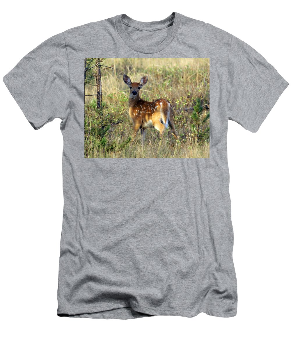 Deer Men's T-Shirt (Athletic Fit) featuring the photograph Fawn by Marty Koch