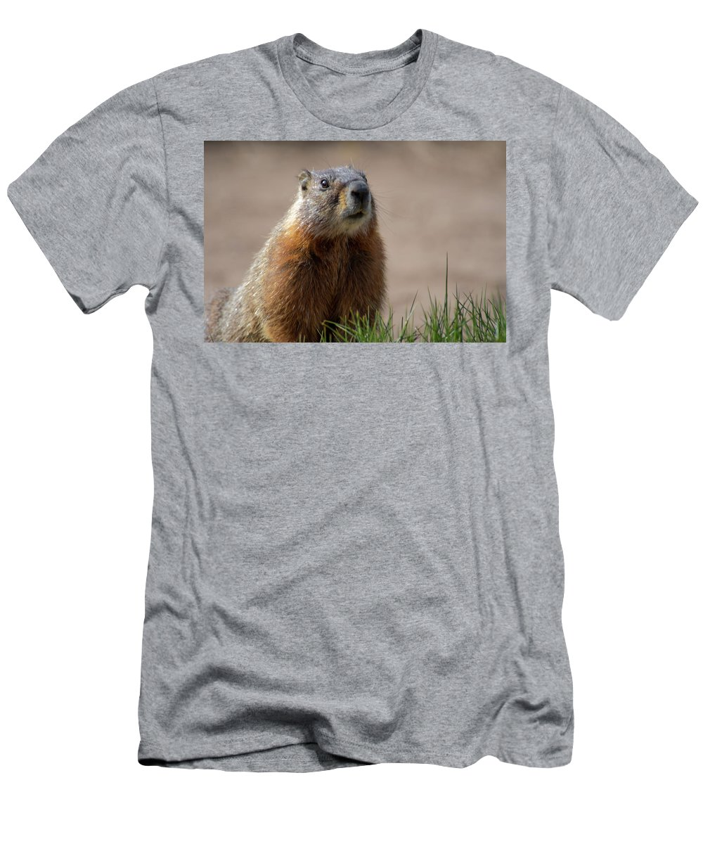 Wyoming T-Shirt featuring the photograph Fearless by Frank Madia