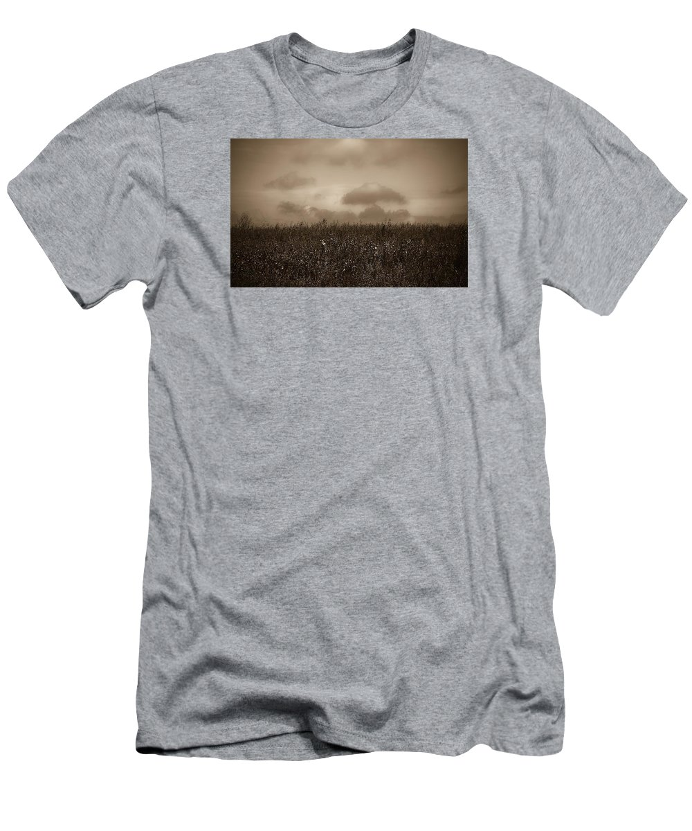 Poland Men's T-Shirt (Athletic Fit) featuring the photograph Field In Sepia Northern Poland by Michael Ziegler