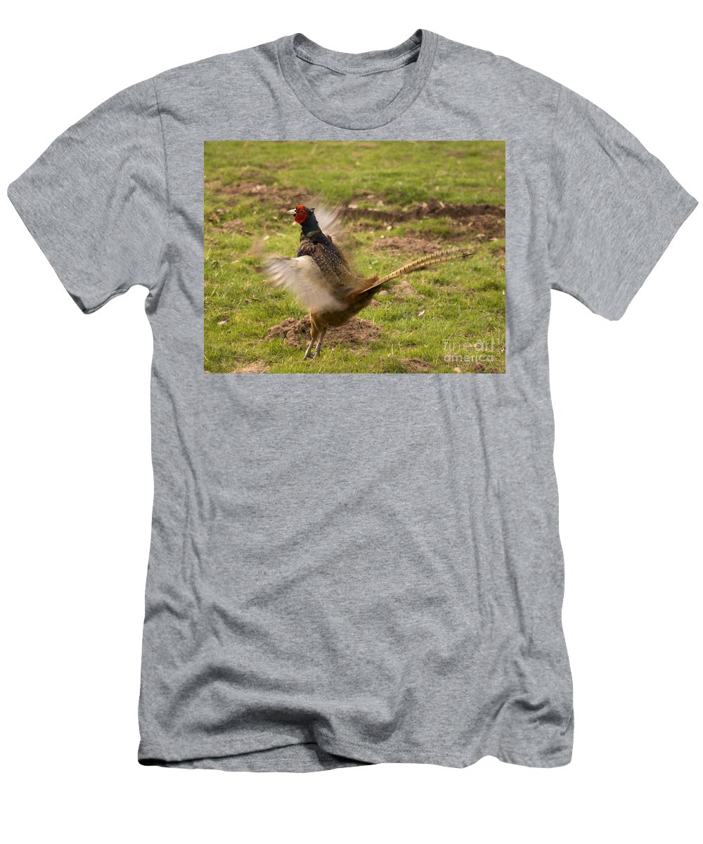 Pheasant Men's T-Shirt (Athletic Fit) featuring the photograph Flapping The Wings by Angel Ciesniarska