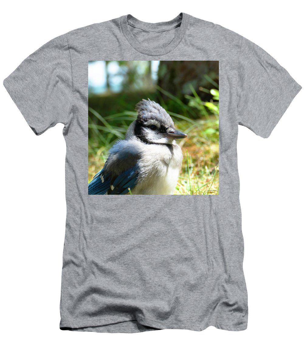 Bluejay Men's T-Shirt (Athletic Fit) featuring the photograph Fledgling by Sally Sperry