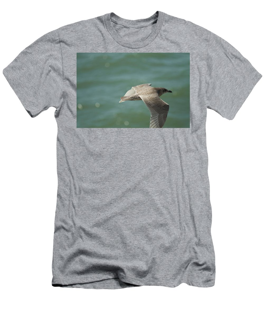 Bird Men's T-Shirt (Athletic Fit) featuring the photograph Flight by Deanna Paull