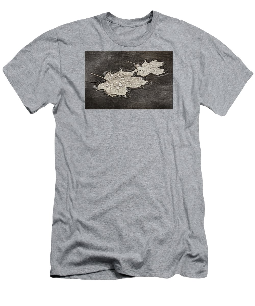 Maple Leaf Men's T-Shirt (Athletic Fit) featuring the photograph Floating Maple Leaves Bw by Theo O'Connor