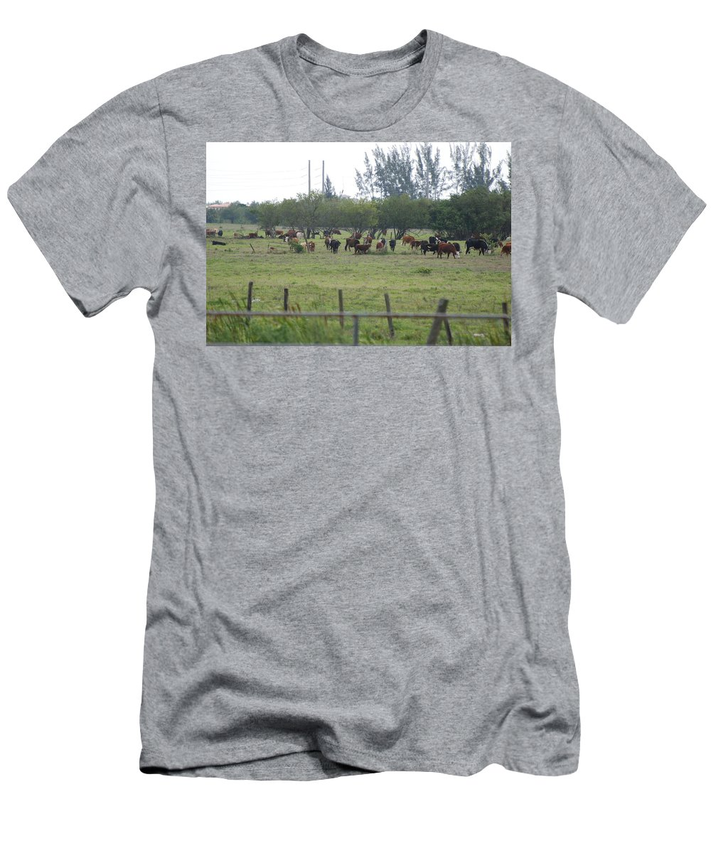 Trees Men's T-Shirt (Athletic Fit) featuring the photograph Florida Ranch by Rob Hans