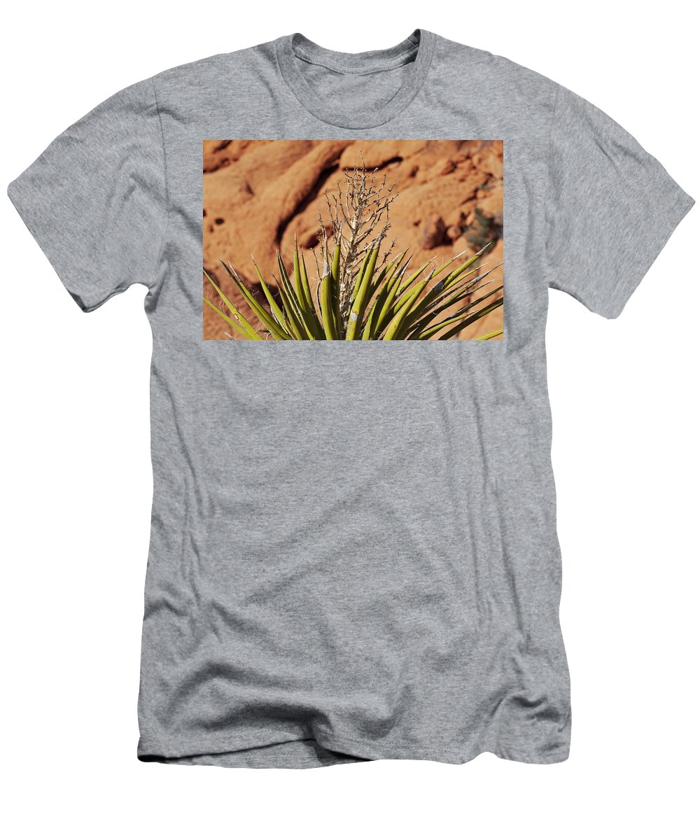 Yucca Plant Men's T-Shirt (Athletic Fit) featuring the photograph Flowerless by Kelley King