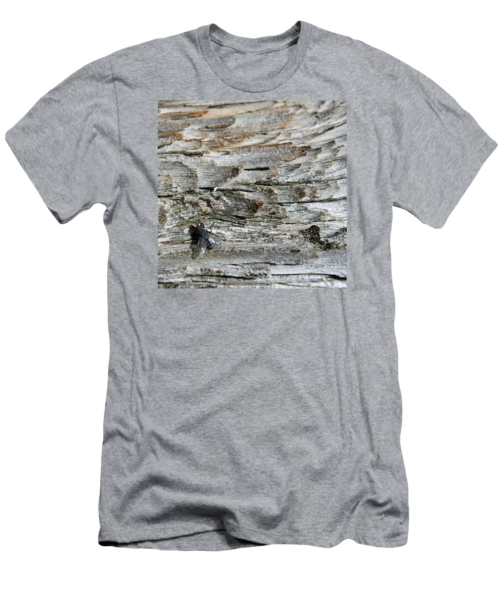 Abstract Men's T-Shirt (Athletic Fit) featuring the photograph Fly On Wood by Ric Bascobert
