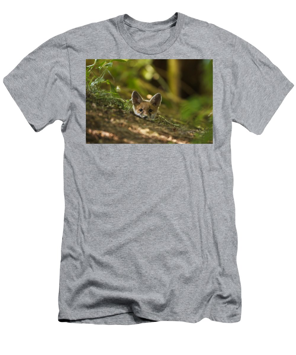 Fox Men's T-Shirt (Athletic Fit) featuring the photograph Fox Hole by Calum Dickson