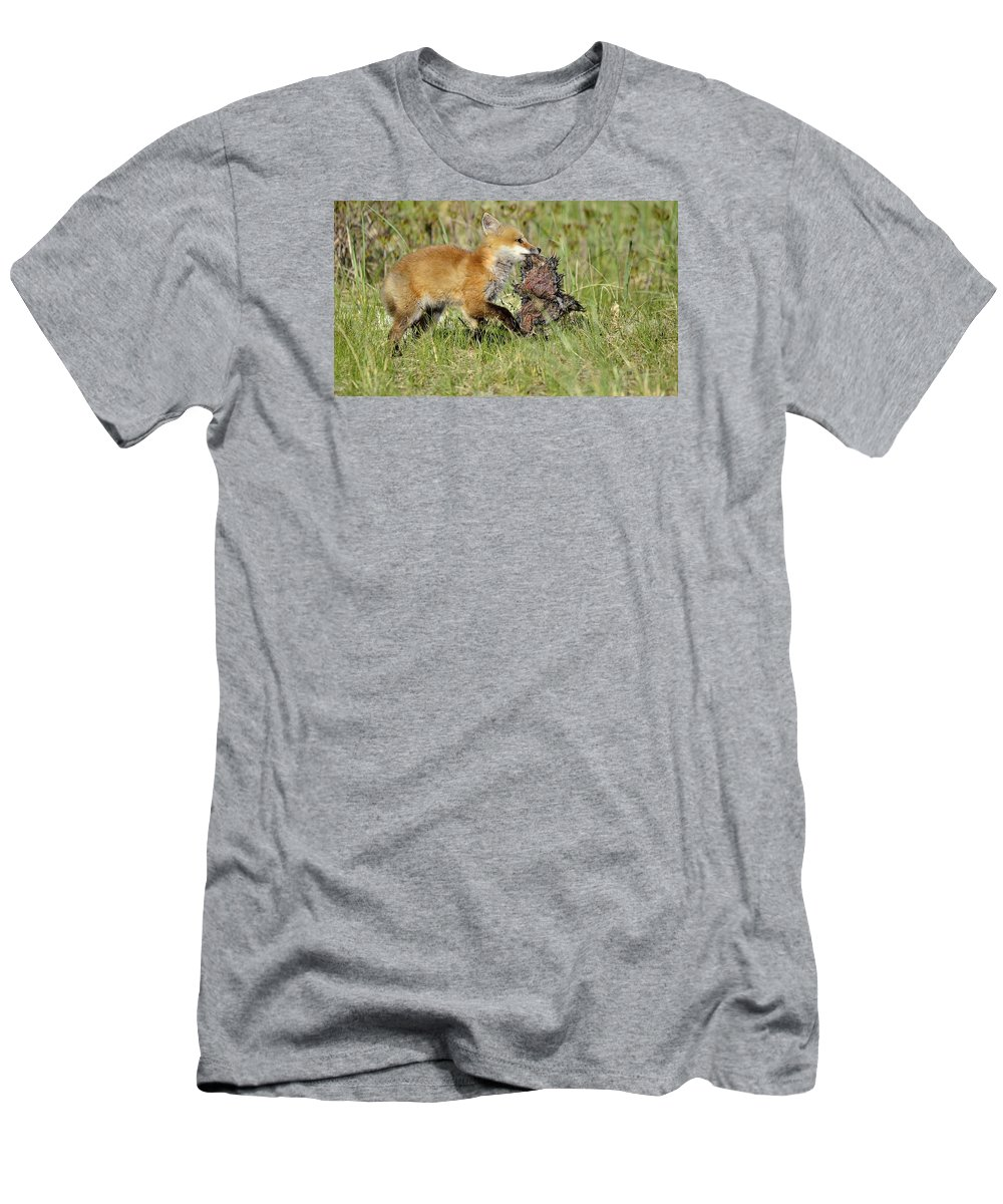Wildlife Men's T-Shirt (Athletic Fit) featuring the photograph Fox With Dinner by Christine Russell