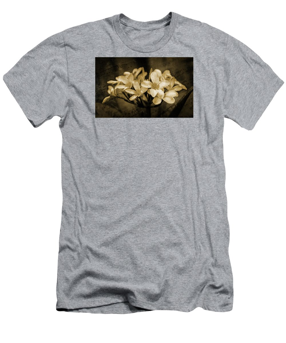 Frangipani Men's T-Shirt (Athletic Fit) featuring the photograph Frangipani In Sepia by Keith Hawley