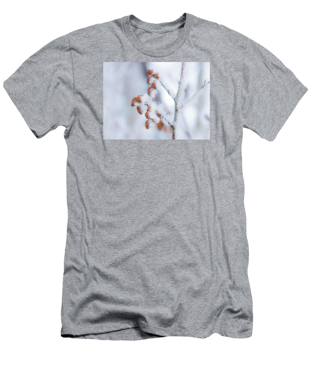 Frost On Cones Men's T-Shirt (Athletic Fit) featuring the photograph Frost On Pine Cones by Richard Mitchell