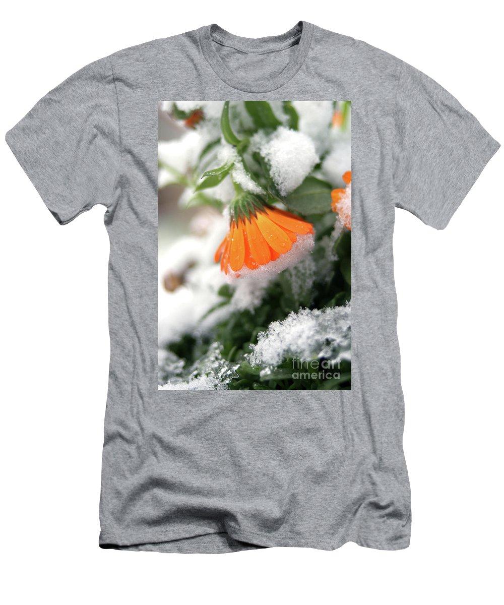 Marigold Men's T-Shirt (Athletic Fit) featuring the photograph Frozen Marigolg by Nataly Raikhel