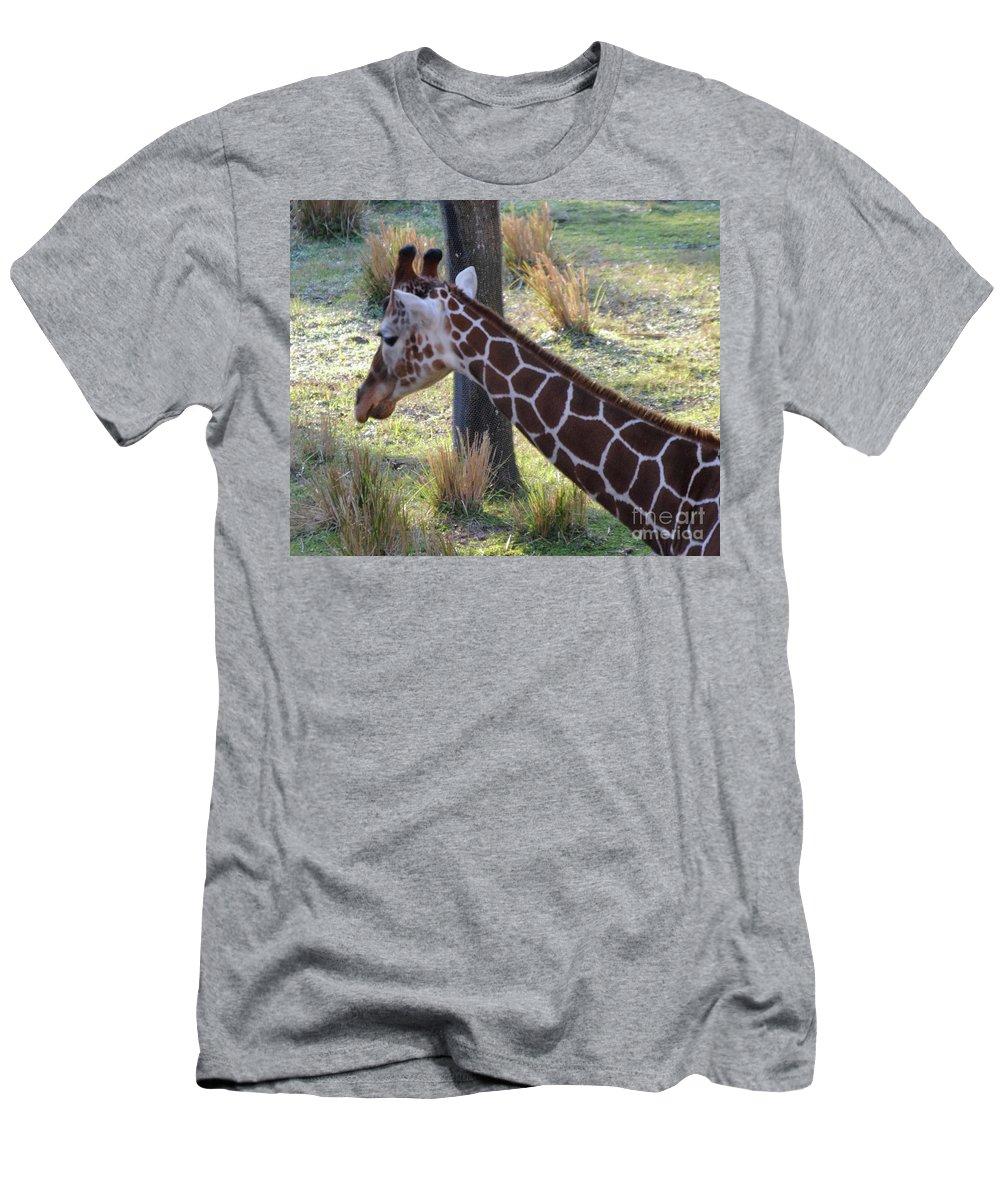 Giraffe Men's T-Shirt (Athletic Fit) featuring the photograph Giraffe by Jost Houk