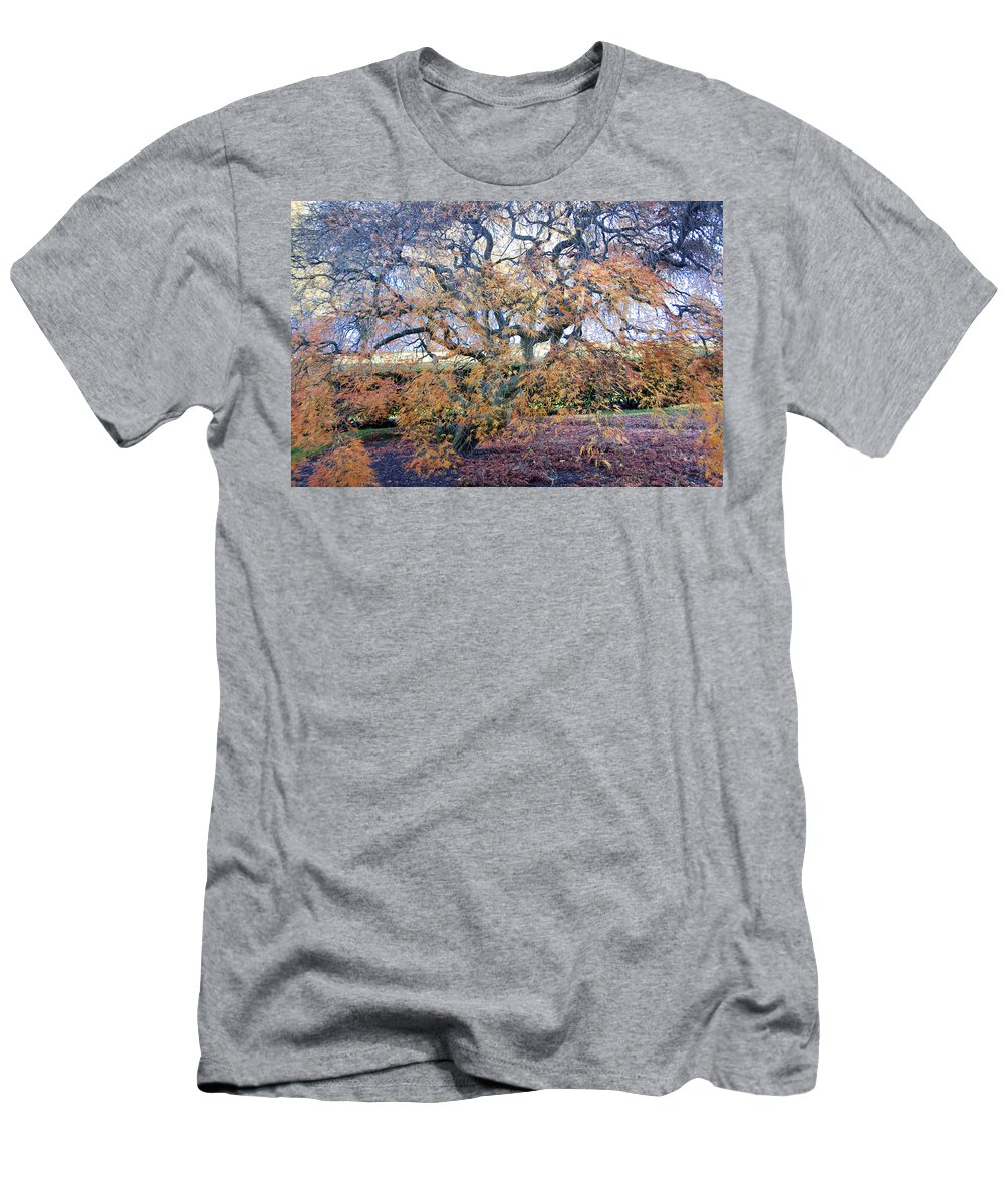 Photography Men's T-Shirt (Athletic Fit) featuring the photograph Glen Park Manor Garden by Steven Natanson