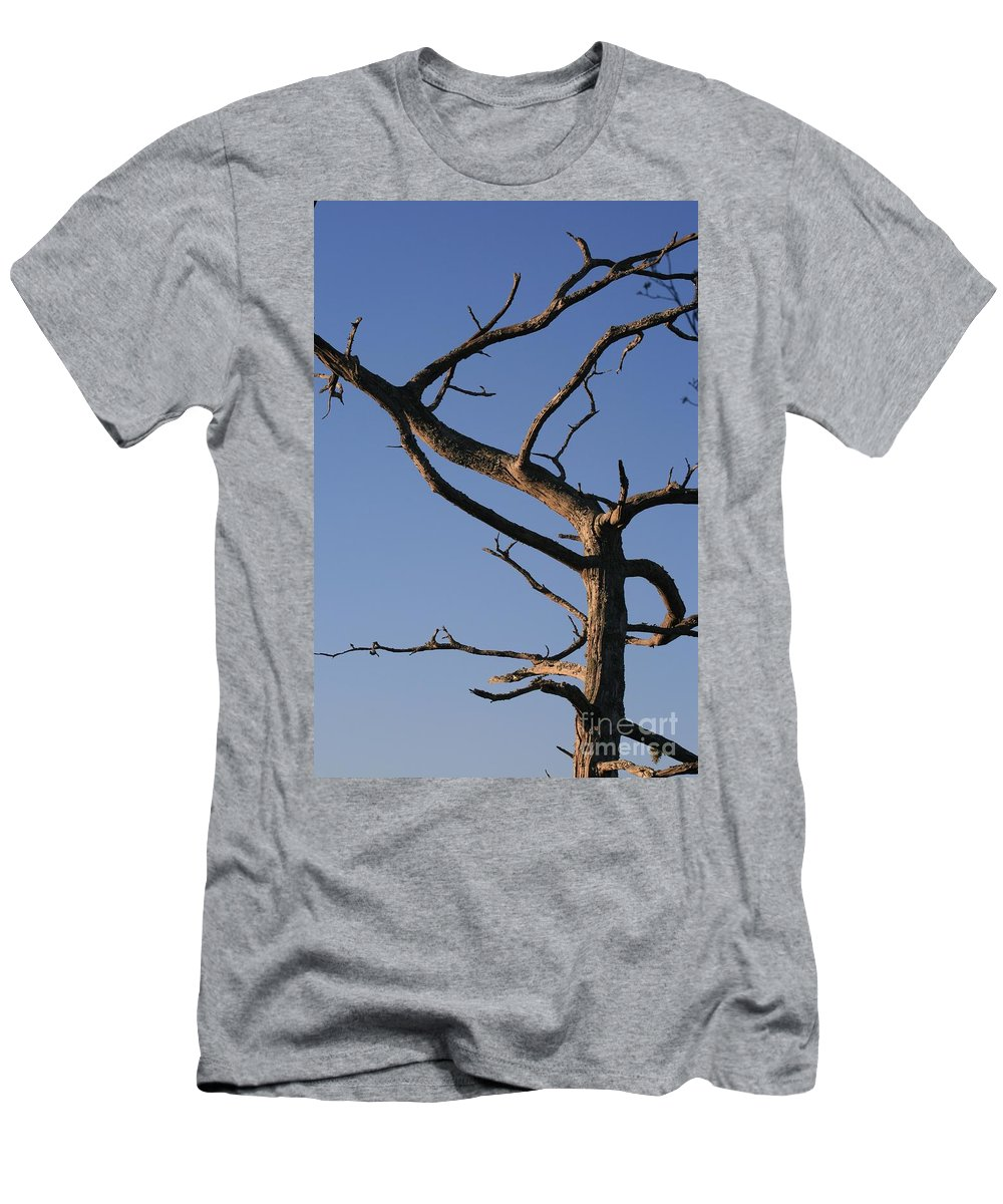 Tree Men's T-Shirt (Athletic Fit) featuring the photograph Gnarly Tree by Nadine Rippelmeyer