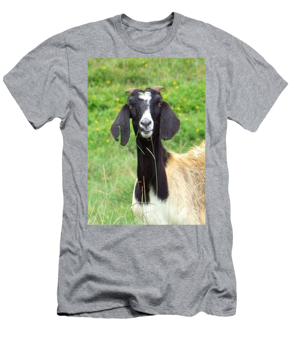Black Men's T-Shirt (Athletic Fit) featuring the photograph Goat Dental Floss by Mary Deal