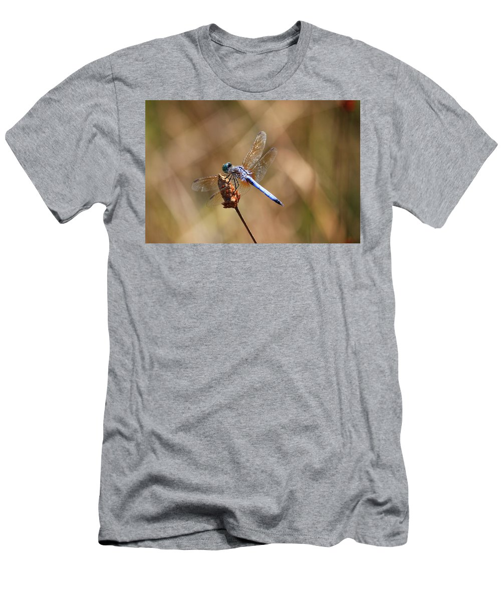 Dragonflies Men's T-Shirt (Athletic Fit) featuring the photograph Golden Wings by Carol Groenen
