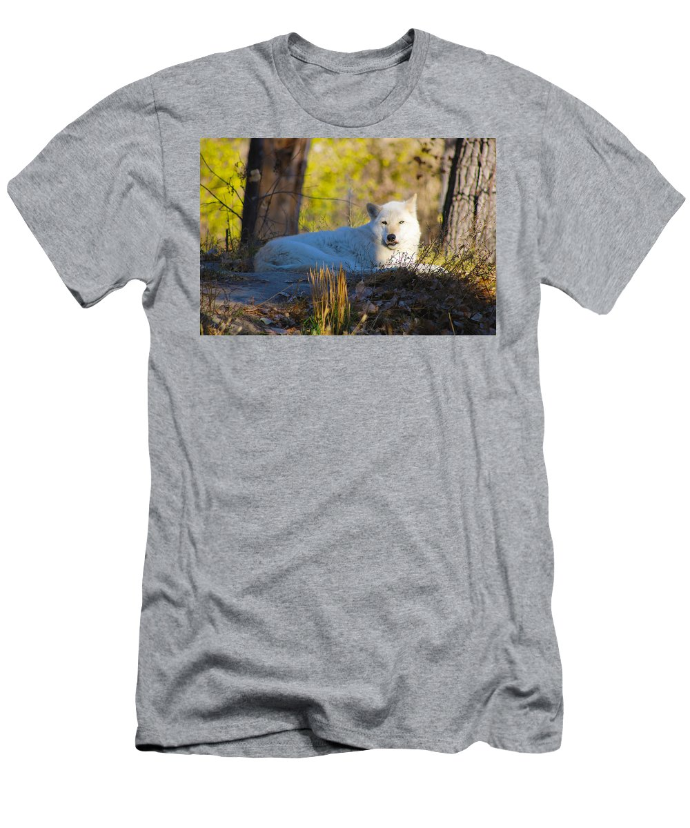 Men's T-Shirt (Athletic Fit) featuring the photograph Gray Wolf by Christina Valentine