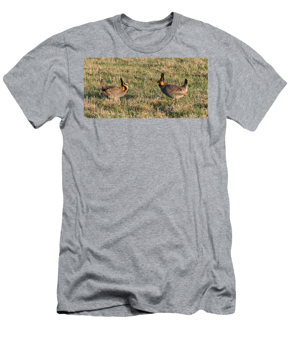 Greater Prairie Chicken Men's T-Shirt (Athletic Fit) featuring the photograph Greater Prairie Chicken Males 1 by David Drew