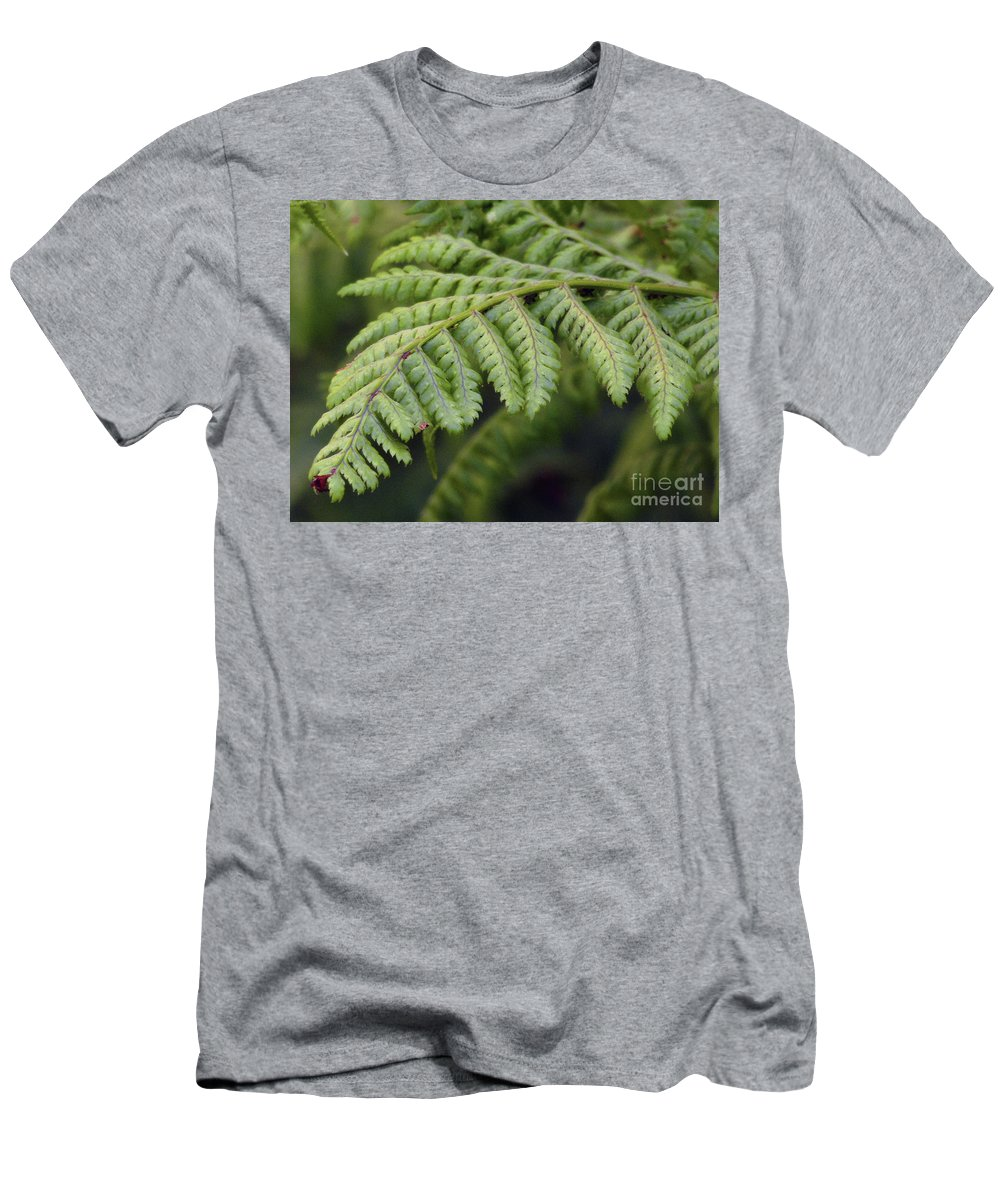 Fern Men's T-Shirt (Athletic Fit) featuring the photograph Green Fern by Kim Tran