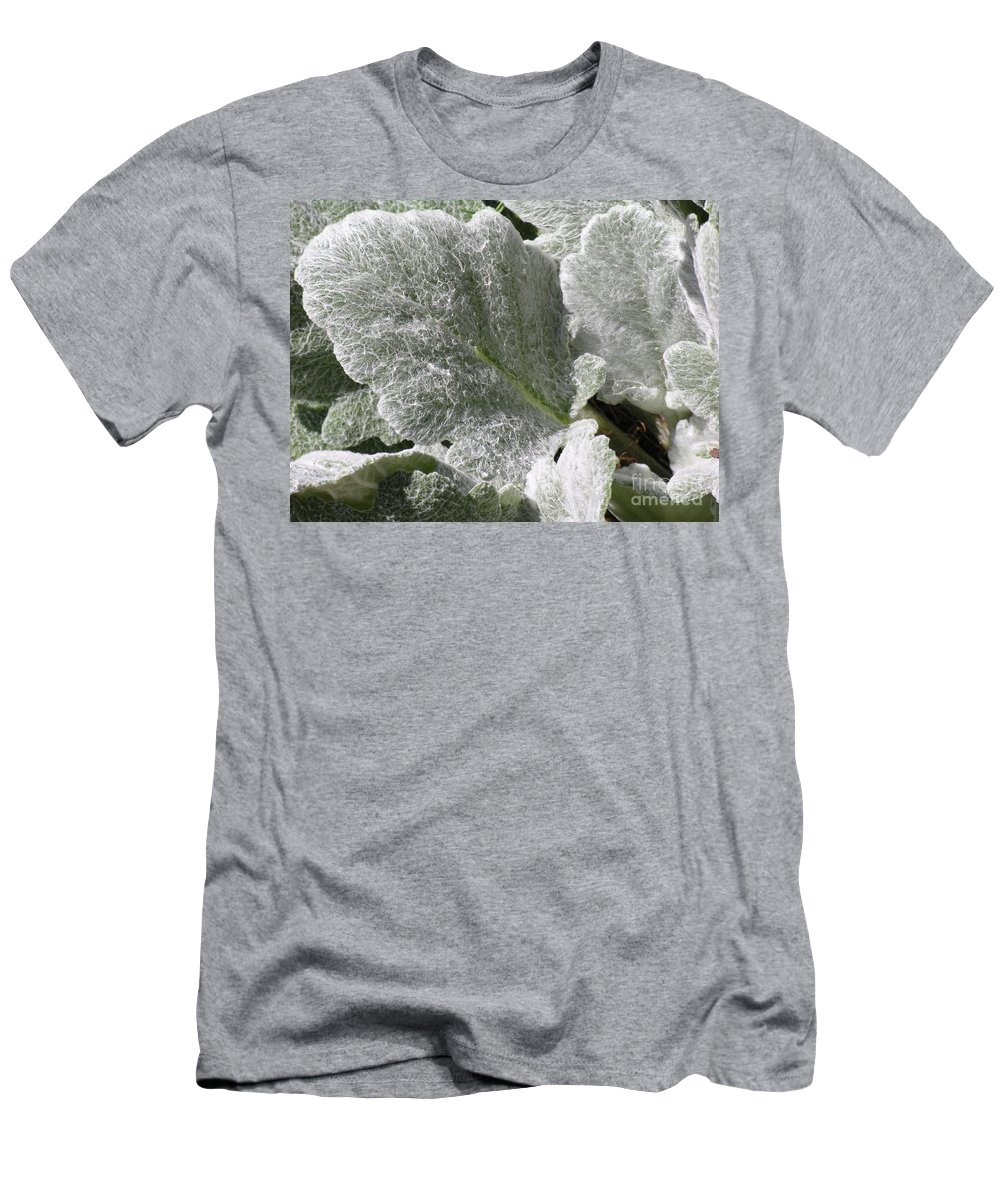 Hairy Men's T-Shirt (Athletic Fit) featuring the photograph Hairy Leaf by Diane Greco-Lesser