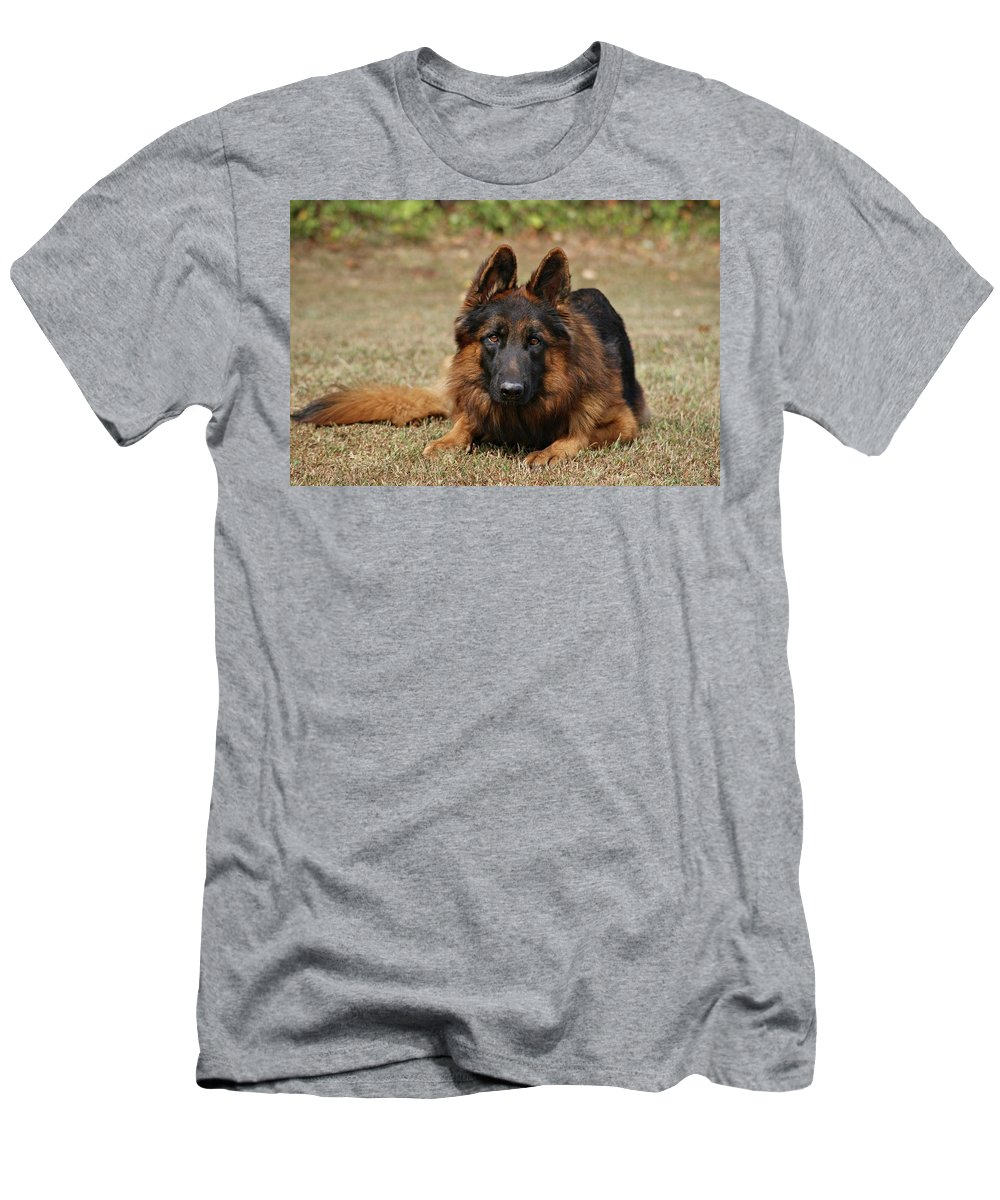 Dogs Men's T-Shirt (Athletic Fit) featuring the photograph Handsome Fella by Sandy Keeton