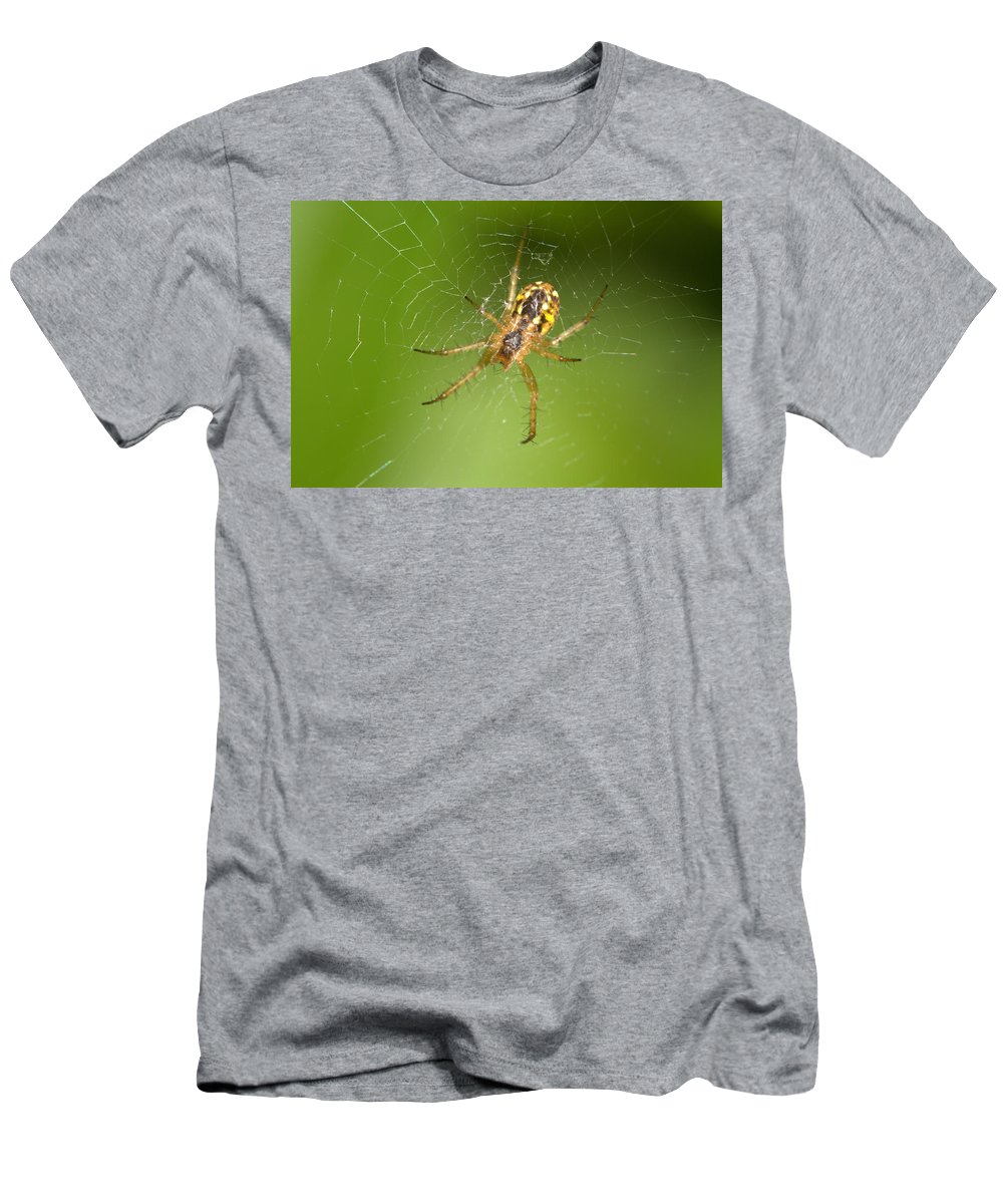Spider Men's T-Shirt (Athletic Fit) featuring the photograph Hanging 3 by Ricardo Oliveira