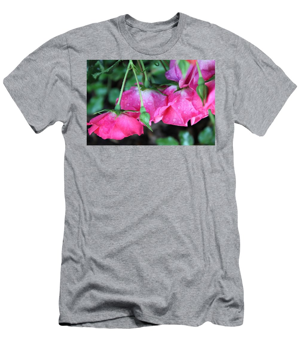 Roses Men's T-Shirt (Athletic Fit) featuring the photograph Hanging Roses by Lauri Novak