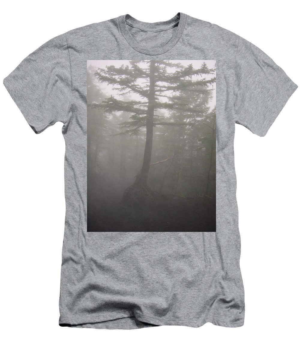 Forrest Men's T-Shirt (Athletic Fit) featuring the photograph Haunted Forest by D Turner