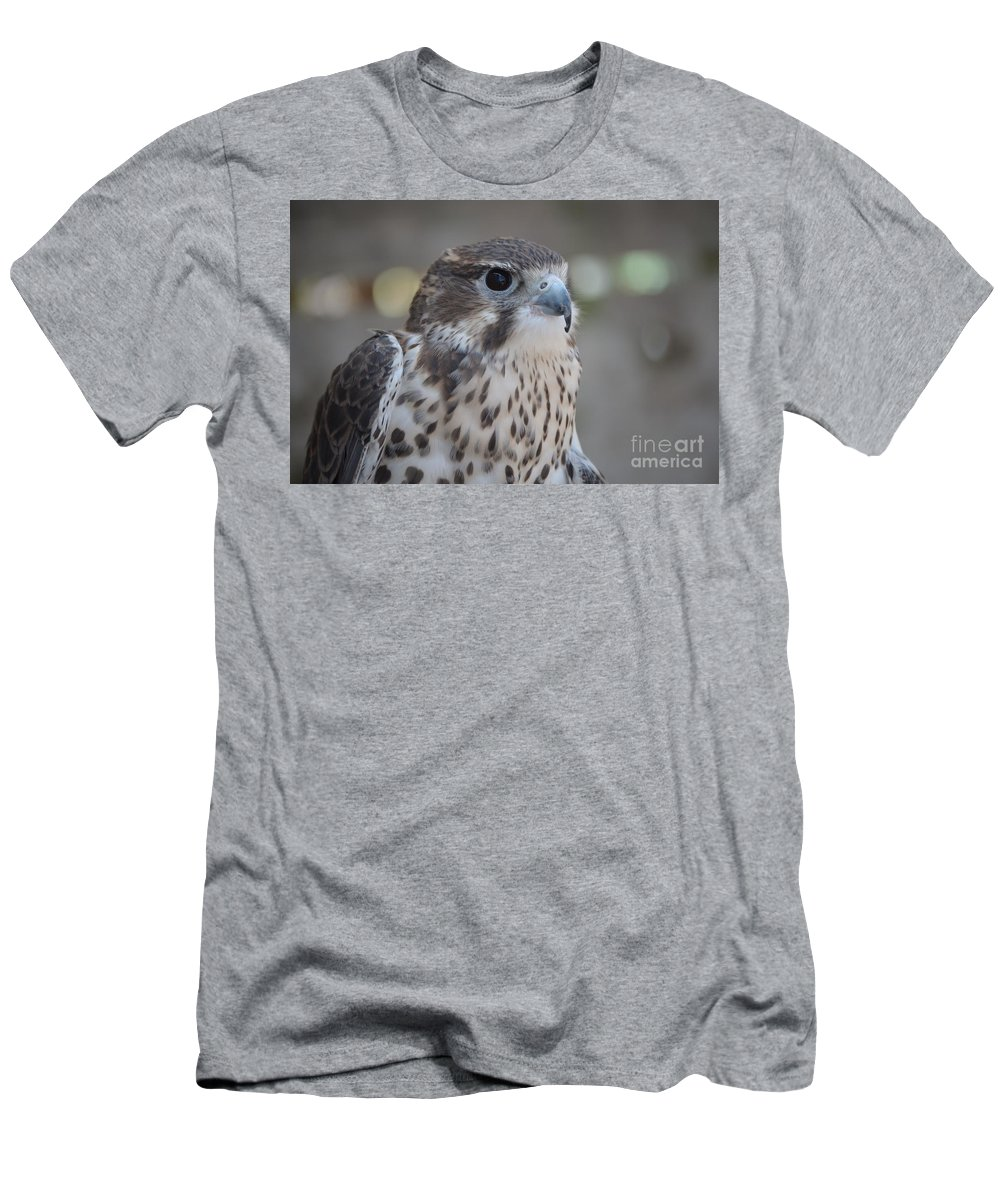 Hawk Men's T-Shirt (Athletic Fit) featuring the photograph Hawk by Jodie Sims