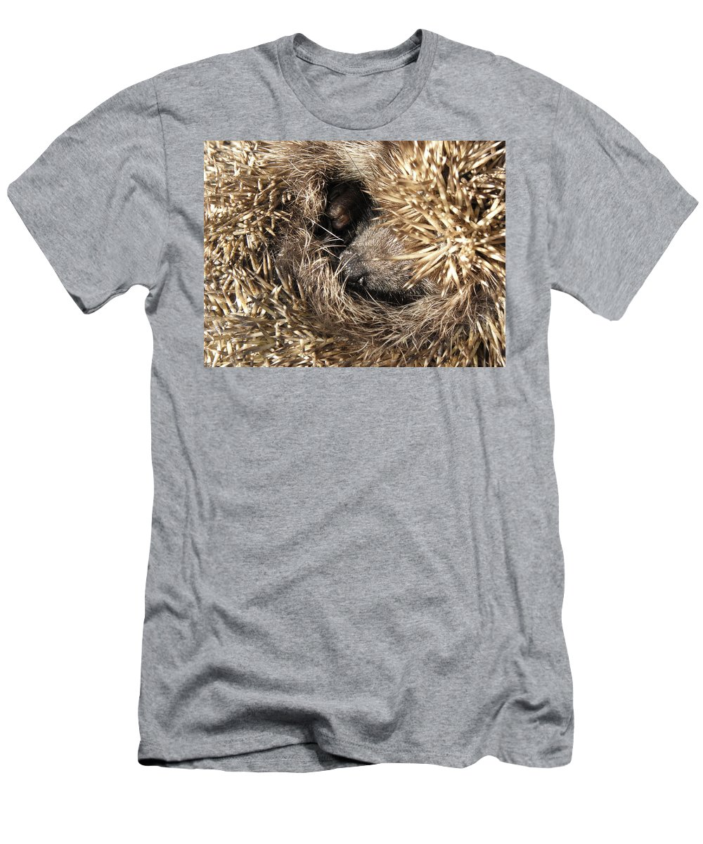 Hedgehog Curled. Background Animal Men's T-Shirt (Athletic Fit) featuring the photograph Hedgehog Curled Up by Yevhenii Stefaniuk