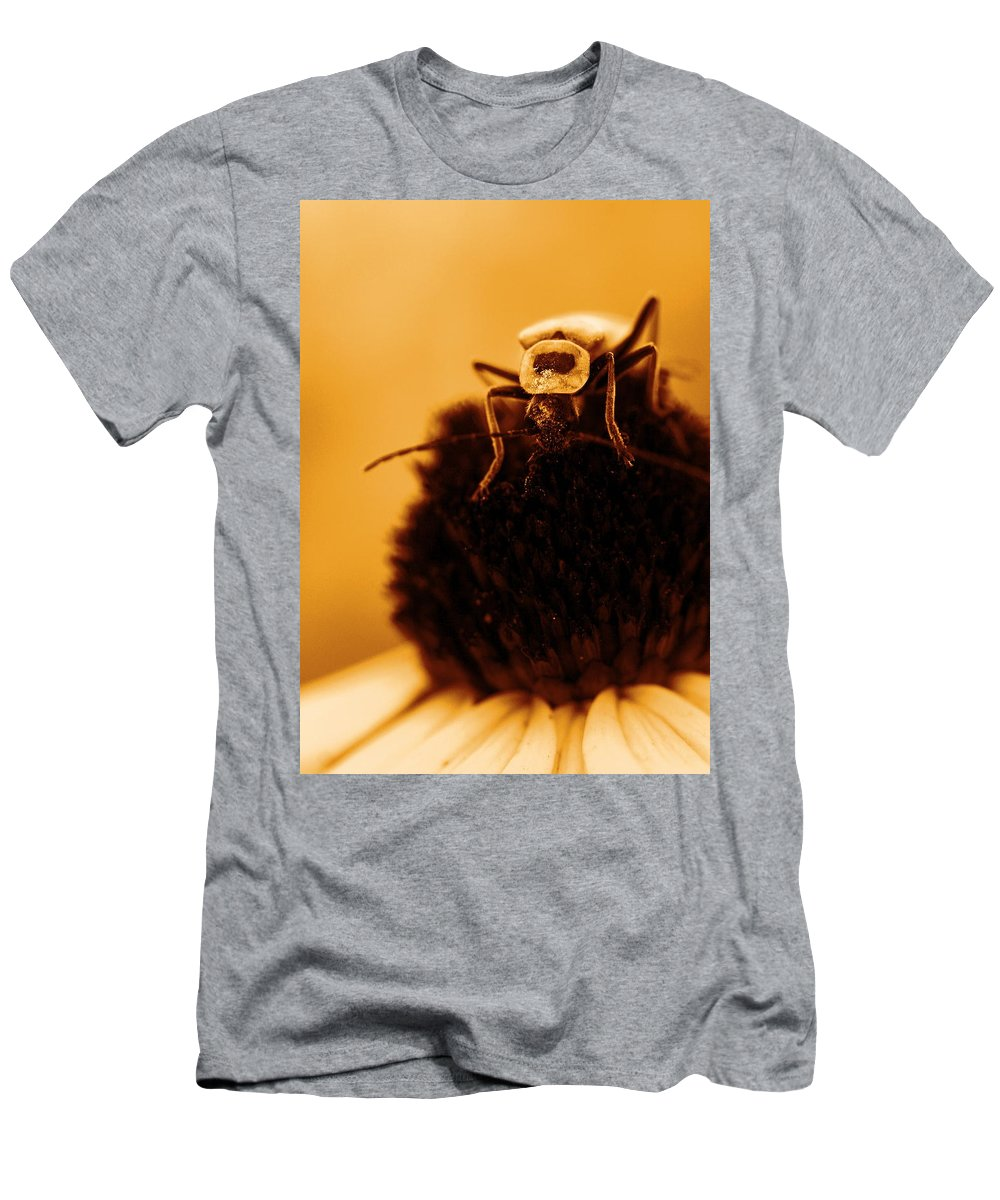 Black Eyed Susan Men's T-Shirt (Athletic Fit) featuring the photograph Hello There by Angela Rath