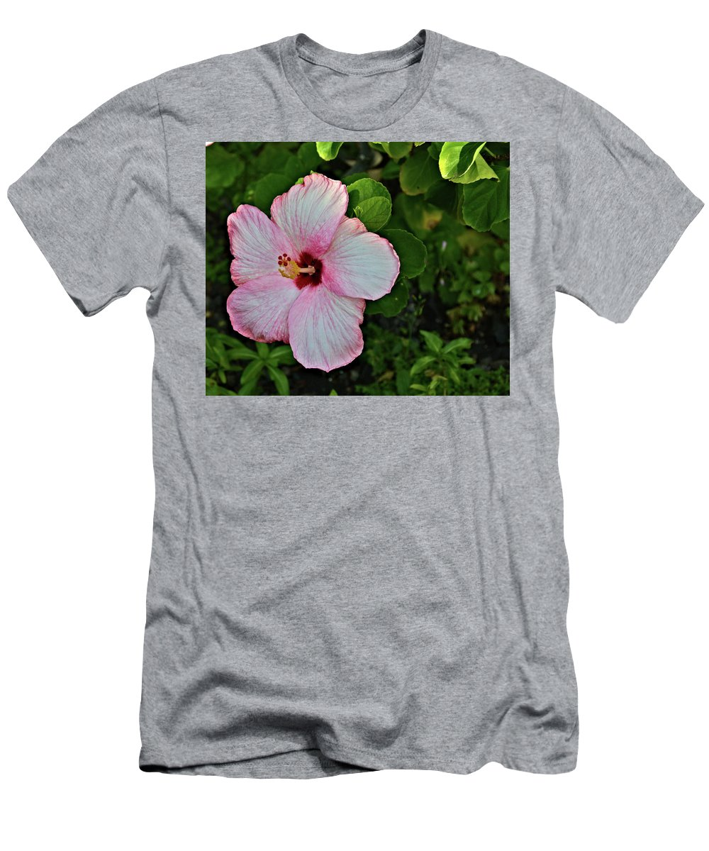 Nature Men's T-Shirt (Athletic Fit) featuring the photograph Hibiscus Flower by Richard Jenkins