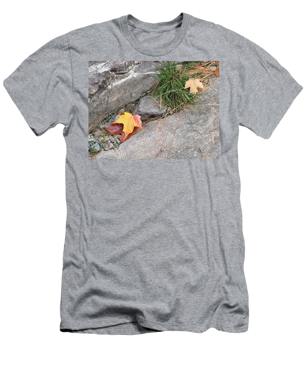 Fall Men's T-Shirt (Athletic Fit) featuring the photograph Hiding by Kelly Mezzapelle