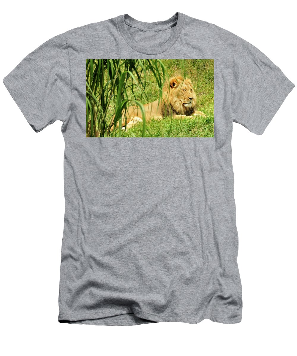 Majesty Men's T-Shirt (Athletic Fit) featuring the photograph His Majesty by David Arment